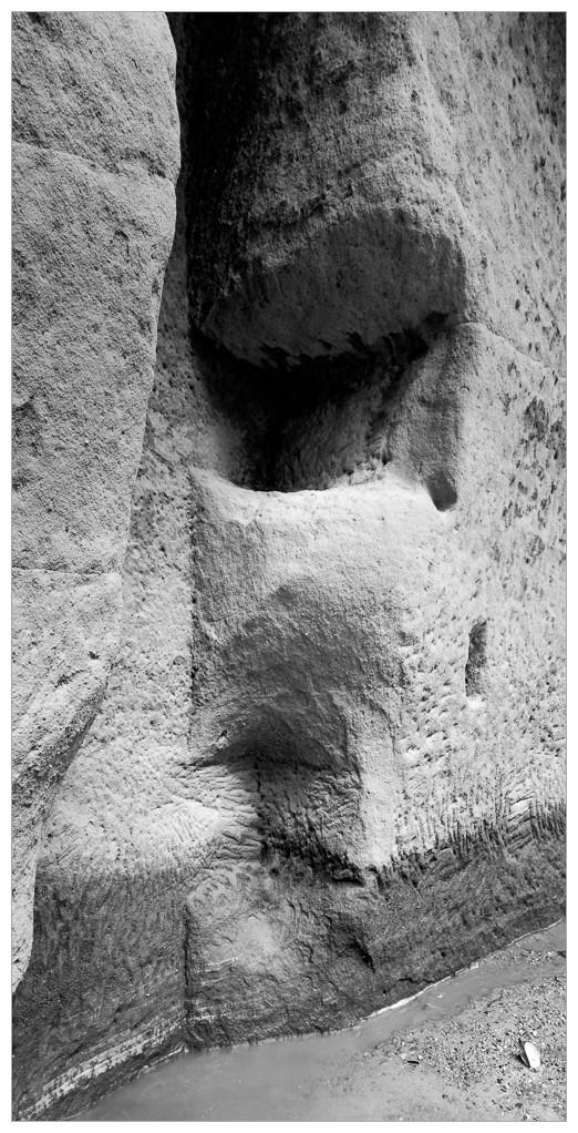 2011-03-20-Prurva na ploucnici_Scan-110326-0012-4x5_Hp5_AM74_1-10