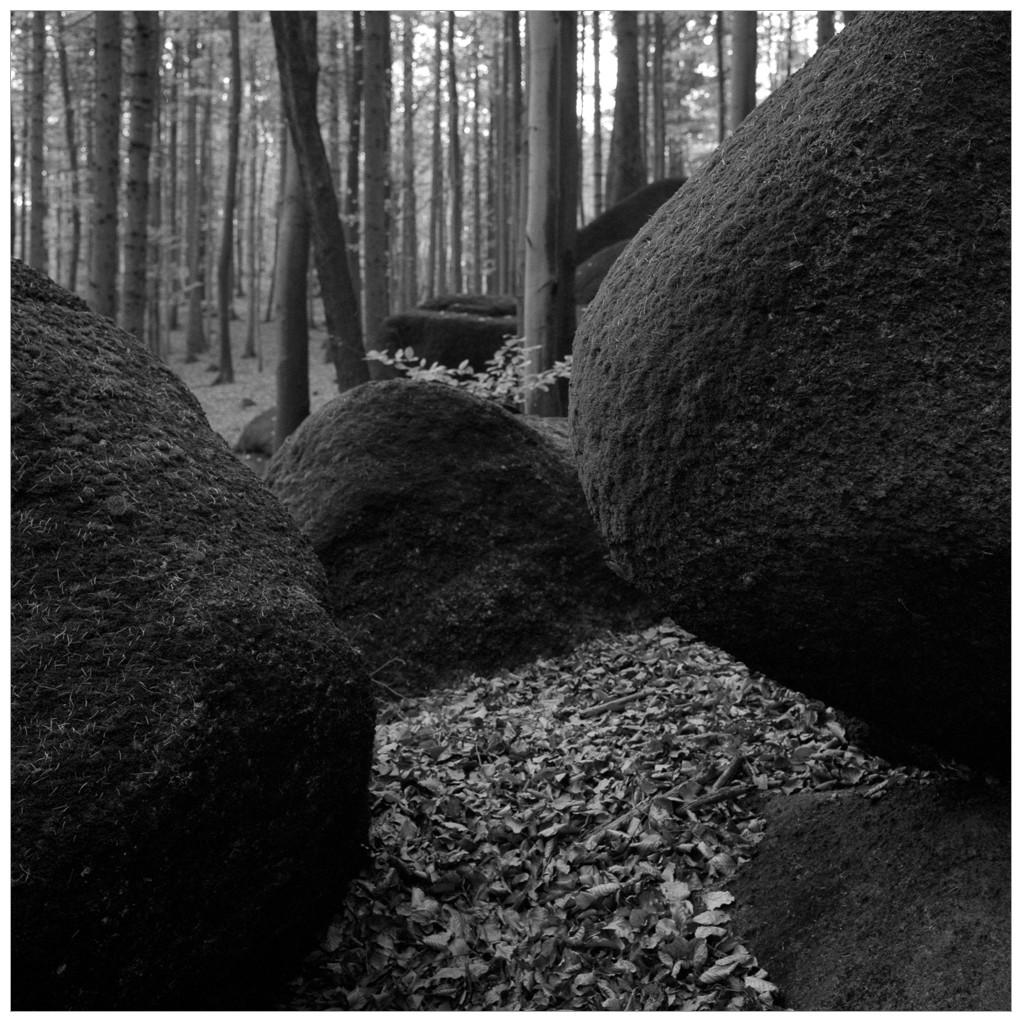 2014-10-XX 6x6 Jizerky s detmi_Scan-141115-0002_6x6_Fuji_Neopan_400_TMax_1-7