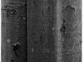 2015-01-04 4x5 Cerny potok a Bartosoviny_Scan-150104-0001_4x5_Ilford_FP4_100_TMax_1-4