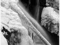 2015-01-04 4x5 Cerny potok a Bartosoviny_Scan-150104-0006_4x5_Ilford_FP4_100_TMax_1-4